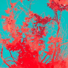 Henrik Simonsen - Blue and Orange