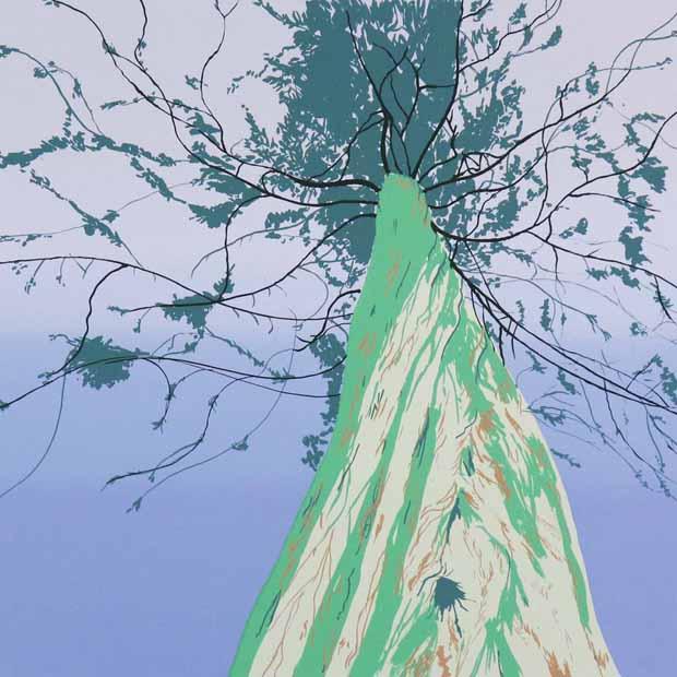 Jonathan Purday - Canopy Memories