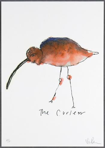 Vic Reeves - The Curlew