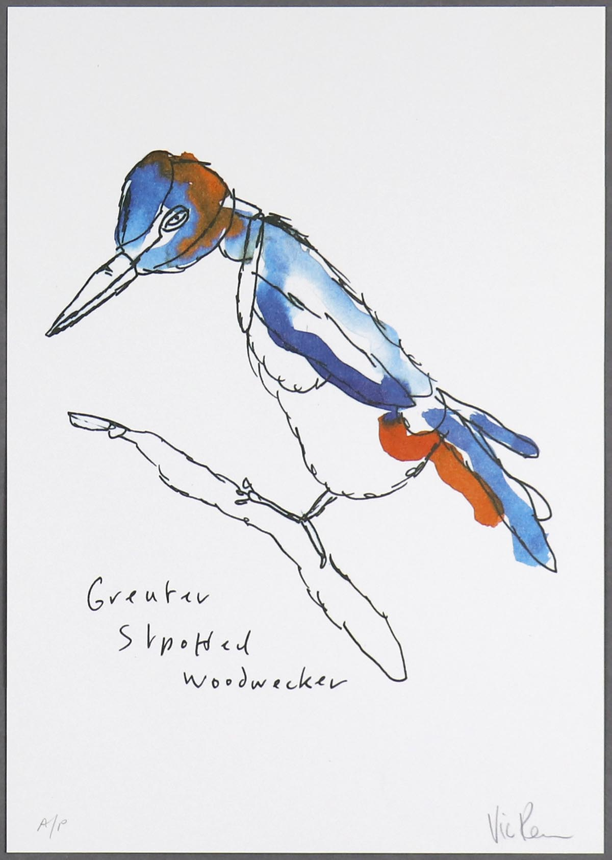 Vic Reeves - Woodpecker