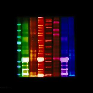Jo Bradford - Lensless Molecular 6
